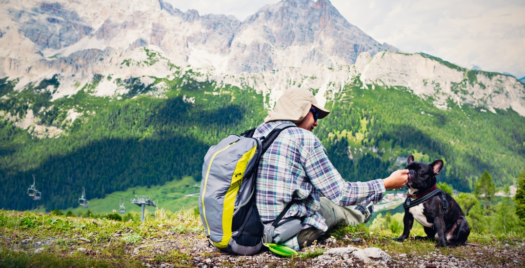 Additional benefits: Hiking with your canine companion.
